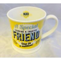 'Special Friend' Diner Mug- Friends & Family Cup range